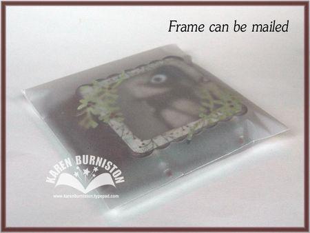 11 Frame Mailing