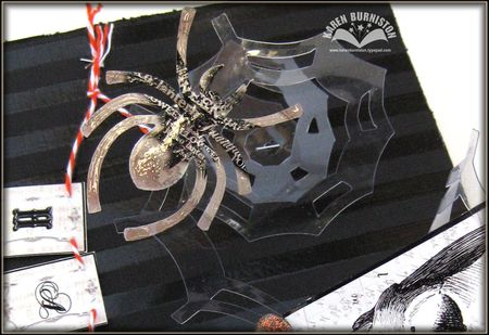 08 Spider Closeup