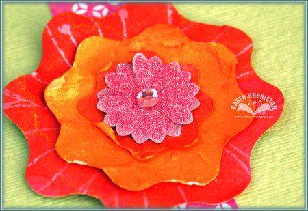 03 Pink Flower Closeup