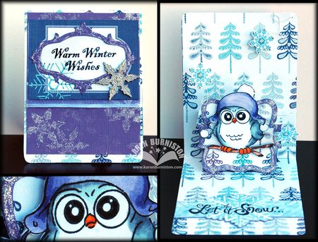 00 Winter Owl PNC Card