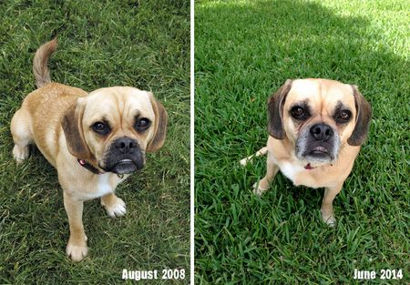 Lucy_then_and_now