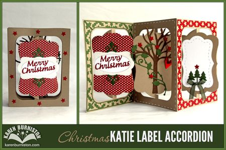 _04_Katie_Christmas_Accordion
