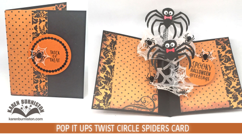 TwistCircleSpidersTN