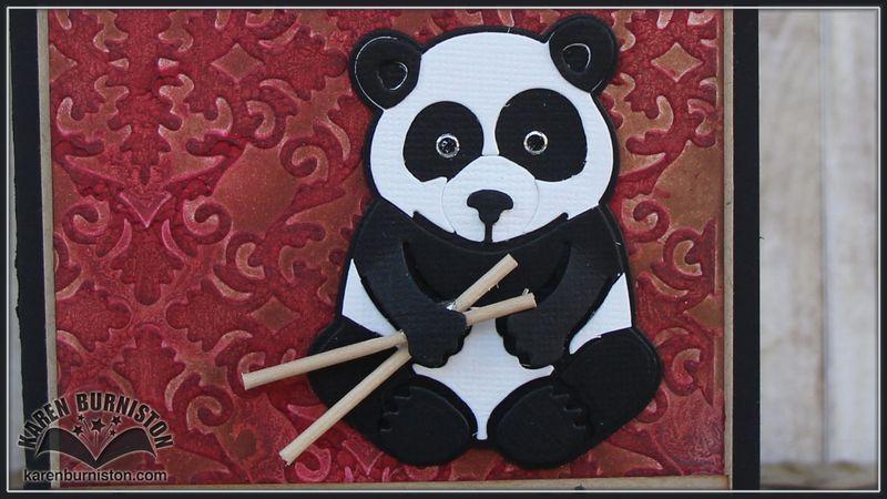 Panda Close Up