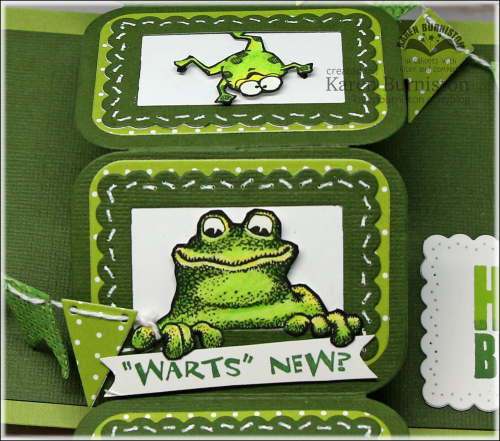 TwistPanelFrogBirthdayCloseUp