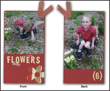 Spring_layout_tag_1