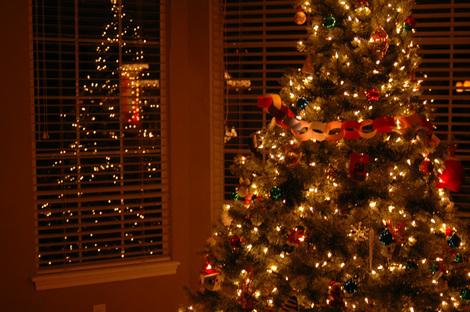 Tree_blog_1